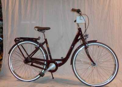 (Nr. 13) Raymon Retro Citybike in 28″